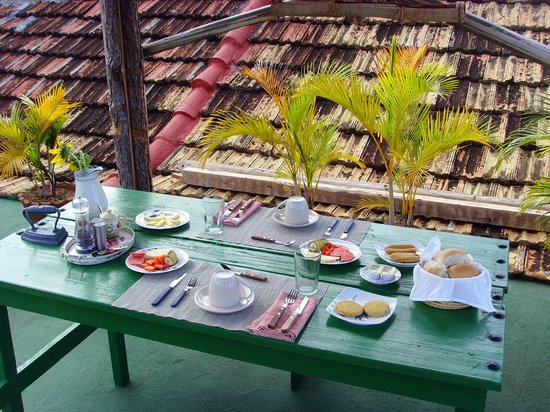Casa MiCuba: Breakfast on the terrace