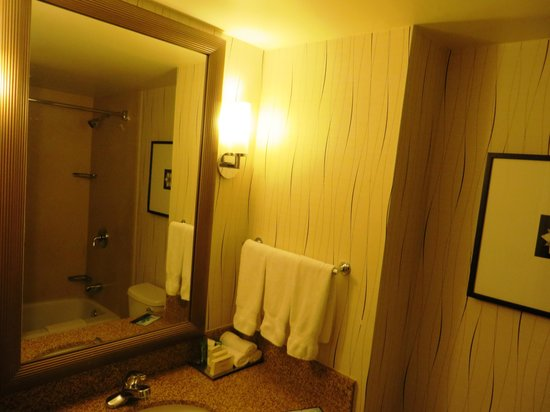 Hilton Los Angeles Airport : bathroom