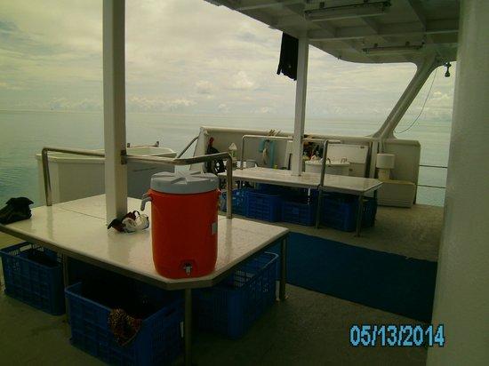 Fish 'n Fins Palau: Back of OH III