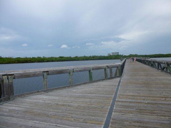 John D. MacArthur Beach State Park: Decks