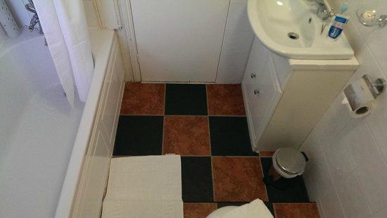 De Rougemont Manor: tiny bathroom