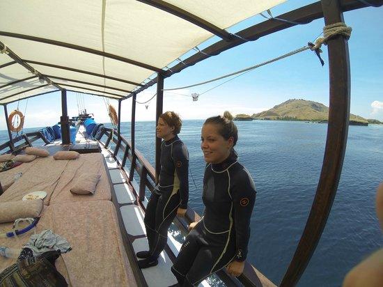 Divine Diving : excitement before a dive!