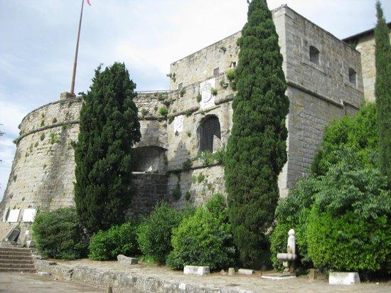 Castello di San Giusto: Вид на крепость