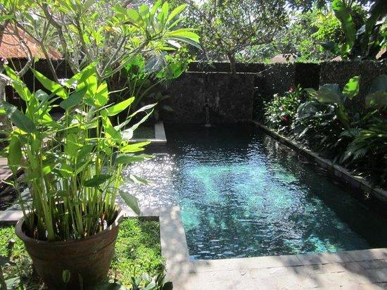 Kayumanis Ubud Private Villa & Spa: Private pool at our Villa