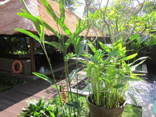Kayumanis Ubud Private Villa & Spa: Open air living room at our villa