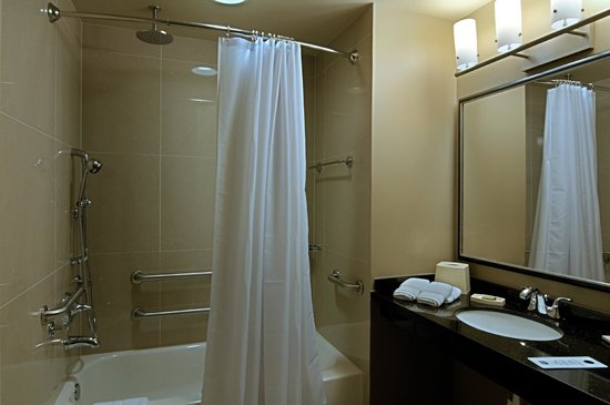 BEST WESTERN PLUS Miami Airport North Hotel & Suites: Accessible Bathroom