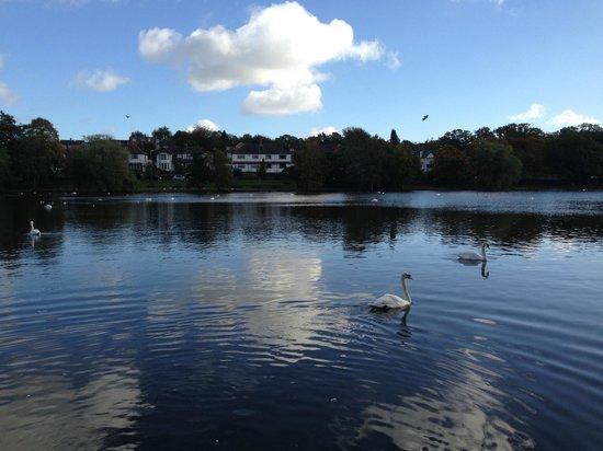 Roath Park: Nice view