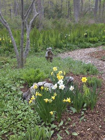 Camden Maine Stay Inn: garden at B&B