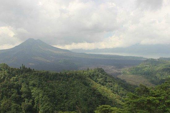 Sukasuka Bali - Day Tours: 昼食をした場所からの景色