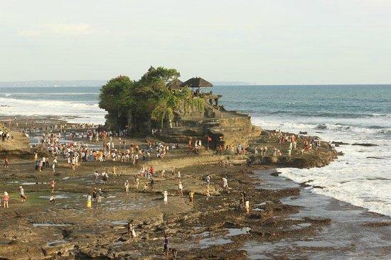 Sukasuka Bali - Day Tours: タナロット寺院