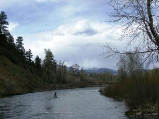 Pagosa Riverside Campground: Fly fishing right off the banks from our campsite