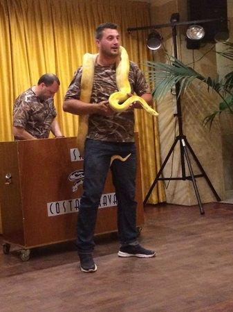 Hotel Merce: Reptile show (evening entertainment )