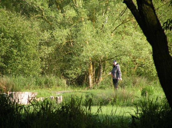 Le Moulin De Gemages: en action sur l'un des 11 étangs