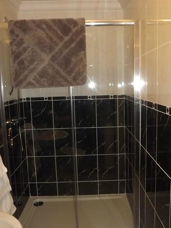 The Palace Hotel: Large walk in shower.