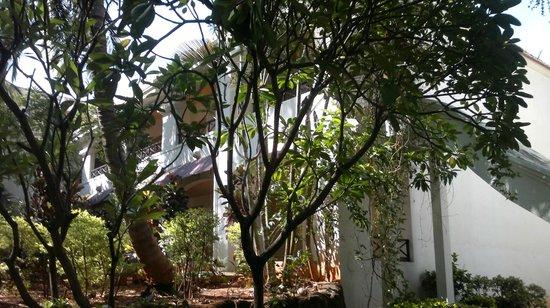 Golden Palms Hotel & Spa: Villas...