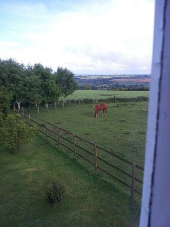 Mine Hill House: room with a view