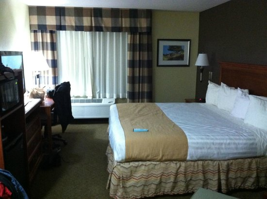 Best Western Canon City : Hotel room