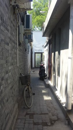 The Orchid Hotel: Located down an alley