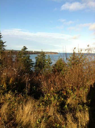 Kye Bay B&B : View from the top