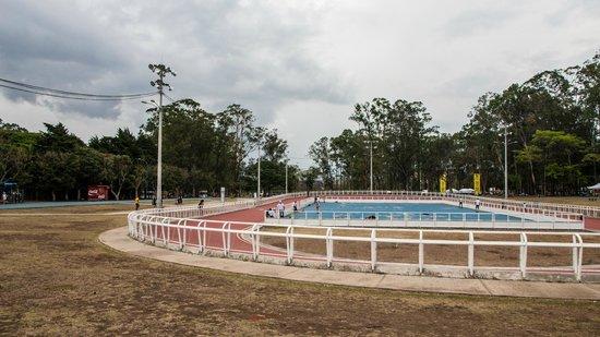 Parque La Sabana: Skate Park