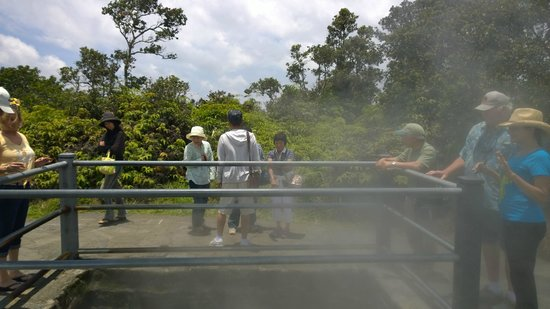 Marylou's Big Island Guided Tours - Private Tours: Steam vent at the Volcanoes National Park