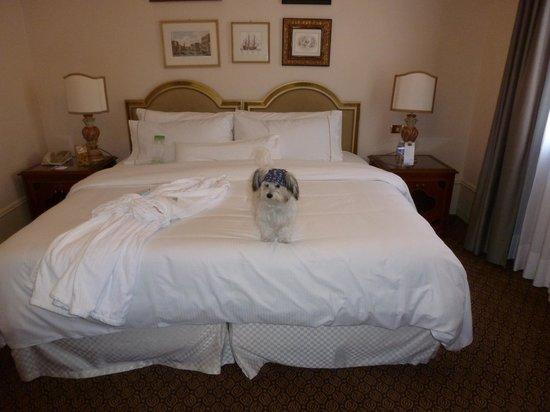 The Westin Europa & Regina, Venice : Bed and our dog (shifu)