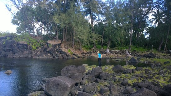 Marylou's Big Island Guided Tours - Private Tours: Hilo beach area