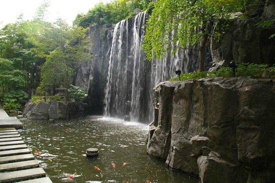 ANA Crowne Plaza Kyoto: Водопад