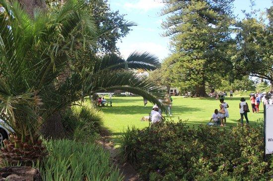Buitenverwachting: Vista dos jardins