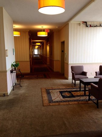 Holiday Inn Roanoke - Tanglewood : 5th floor-nice, tall hallways & sitting area