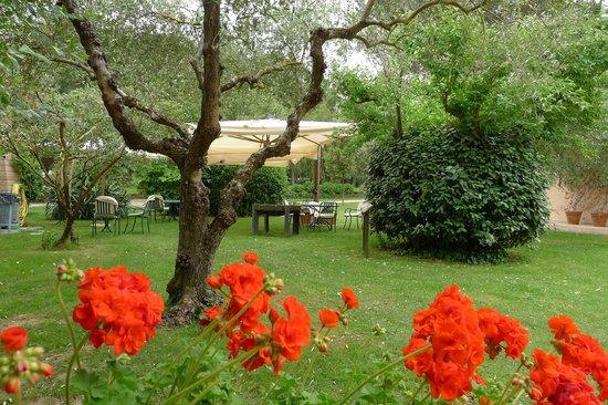 Montebelli Agriturismo & Country Hotel: dalla mia finestra