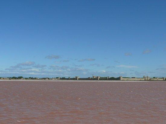 Salin d'Aigues-Mortes : Aigues Mortes dalle saline