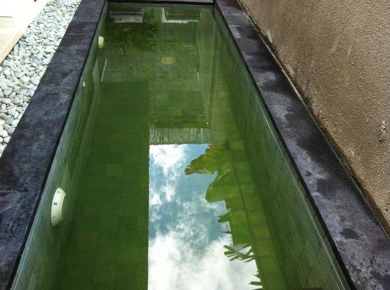 Piscine verte picture of new pondok sara villa seminyak for Piscine verte