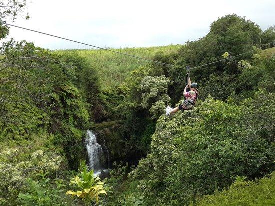 Skyline Eco Adventures - Akaka Falls: Ziplining Akaka Falls on the Big Island, HI