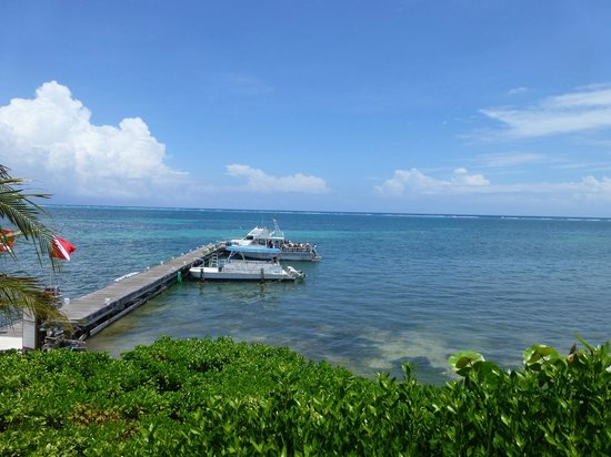 Compass Point Dive Resort: Dive boats on the dock at Compass Point