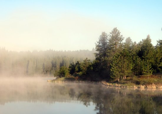 Moscow, ID: Spring Valley - Early morning mists