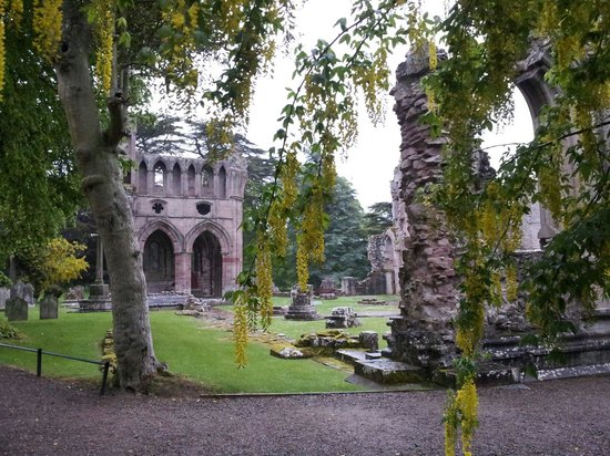 Dryburgh Abbey Hotel: Dryburgh Abbey - just over the wall.
