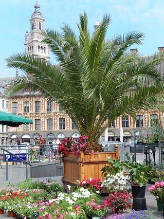 Grande place : grand place lille - mercato fiori 1