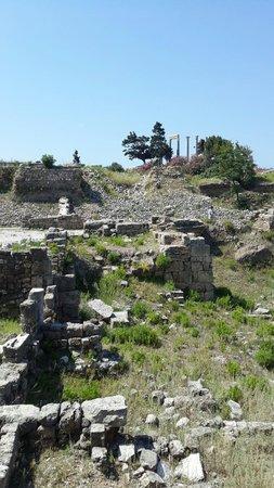 Château de Byblos : TEMPLE