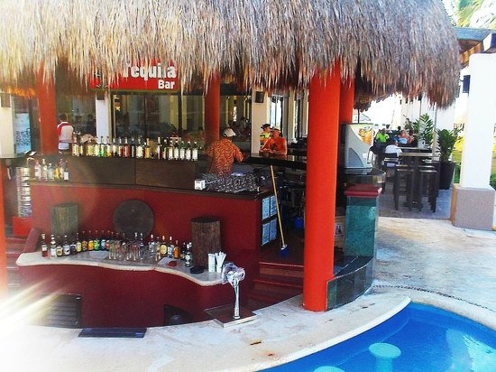 Catalonia Yucatan Beach: bar in piscina