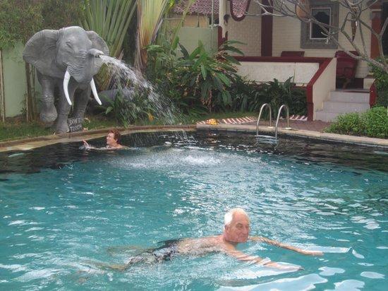 Pondok Bambu : zicht op zwembad