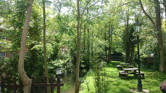 The Willow Tree: Idyllic garden