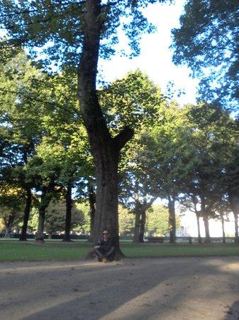 Parc du Cinquantenaire: Cinquantenaire Park