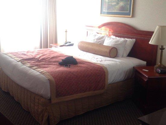 Best Western Plus Burlington Inn & Suites: The bed