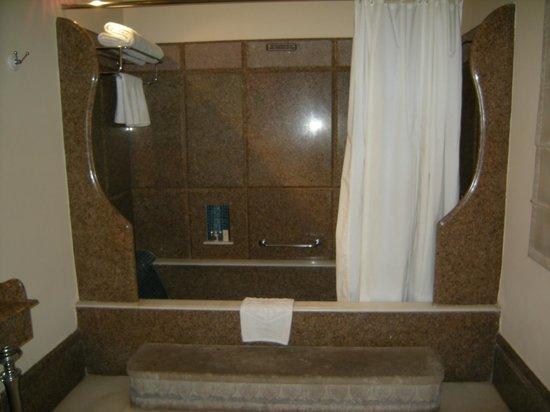 Usha Kiran Palace : Sunken Tub