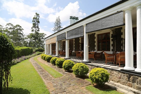 Ceylon Tea Trails: The veranda for all meals