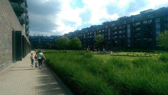 Charlottehaven: Gardens and playground.