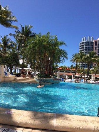 Loews Miami Beach Hotel: aerea de pileta