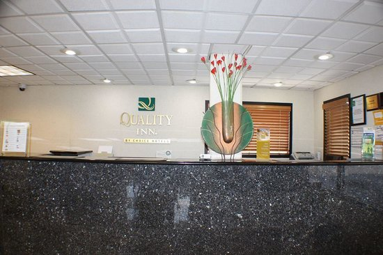 Quality Inn : FRONT DESK COUNTER