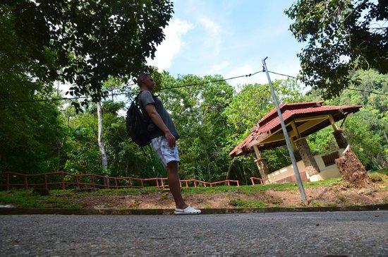 Telaga Tujuh Waterfalls: Hard up